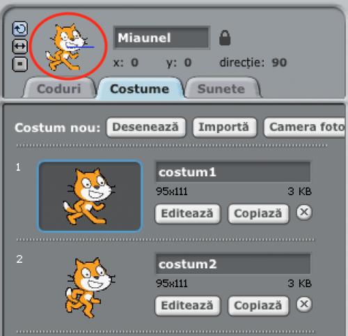 Miaunel în centru ecranului (X:0, Y:0) orientat spre dreapta (direcția 90).